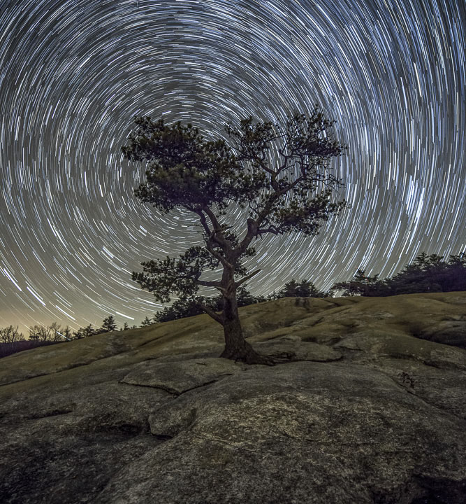 Rapt Journal North Star Spiral Behind Stone Mountain Summit Tree